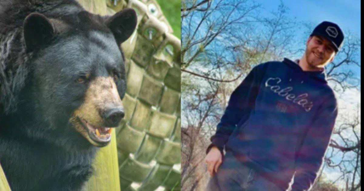 kuma inu.png?resize=412,232 - 愛犬の為に巨大な黒熊と素手で戦った男性… その理由が感動的と話題に