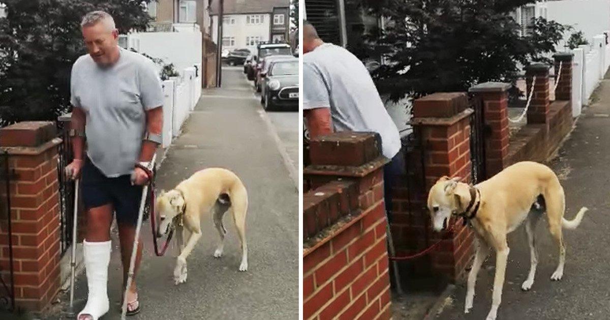 1 137.jpg?resize=1200,630 - Gasta 400 Dólares En Examinar A Su Perro Cojo Y Descubre Que El Animal Solo Imitaba A Su Dueño