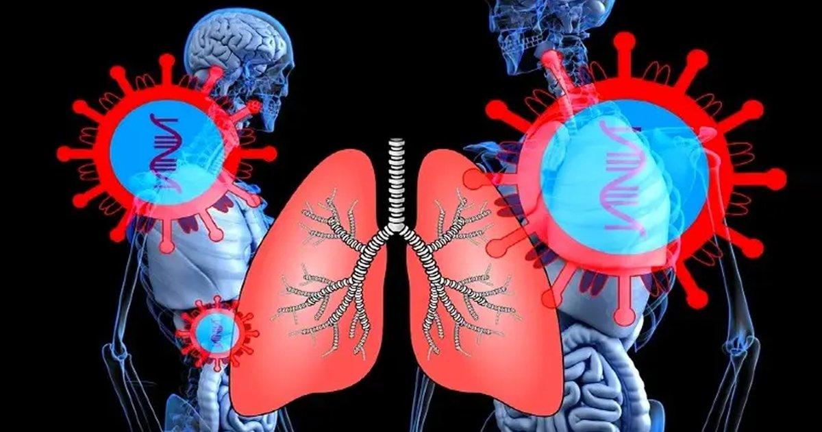 1 145.jpg?resize=1200,630 - Científicos Descubren Cuál Es La Debilidad Del Cuerpo Que Usa El Coronavirus Para Penetrar Los Pulmones