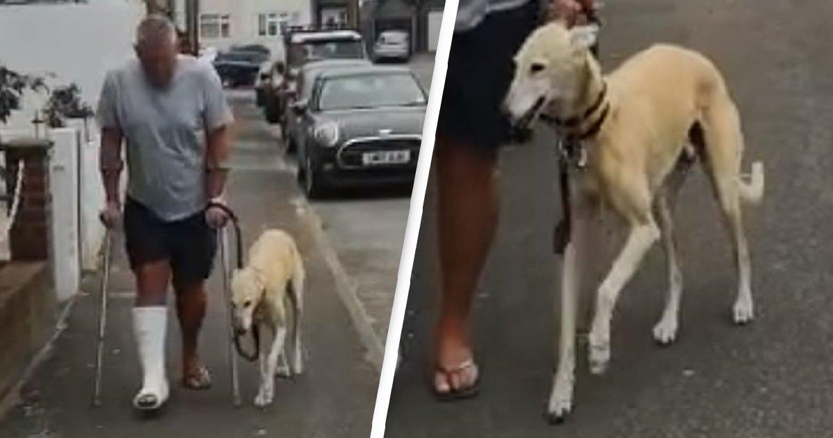 10 dog.jpg?resize=412,232 - Un homme avec la cheville cassée découvre que son chien boitait juste pour l'imiter