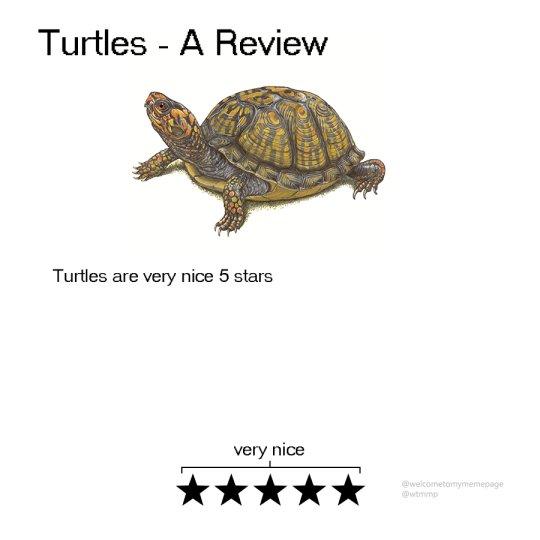 rate animals