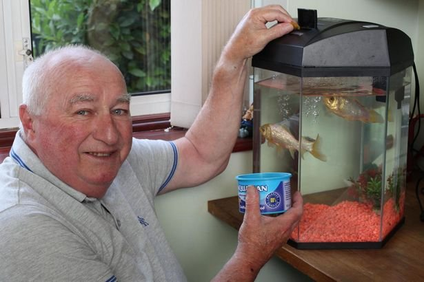 oldest goldfish