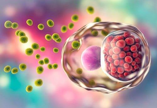 ETS - ¿Conoces el riesgo de las enfermedades sexualmente transmisibles? | Instituto Europeo de Salud y Bienestar Social