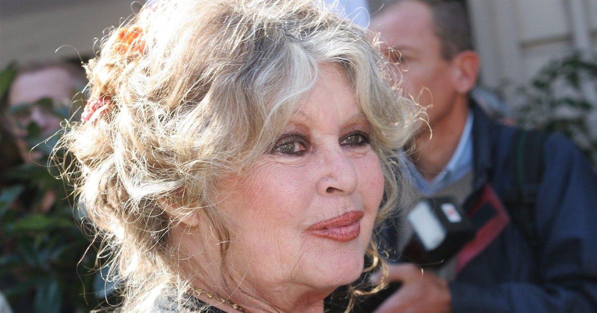 bb 1.png?resize=1200,630 - Brigitte Bardot est poursuivie en justice pour « injures » envers les chasseurs