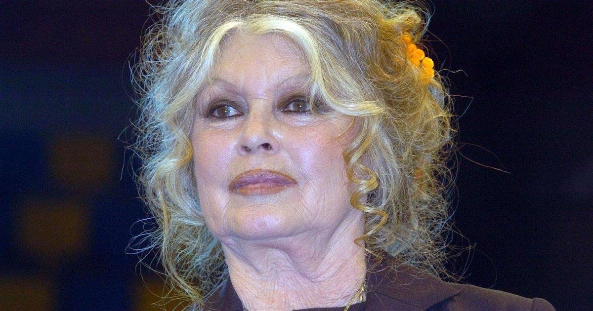 bb.png?resize=1200,630 - Covid-19 : Brigitte Bardot explique pourquoi elle refuse de se faire vacciner