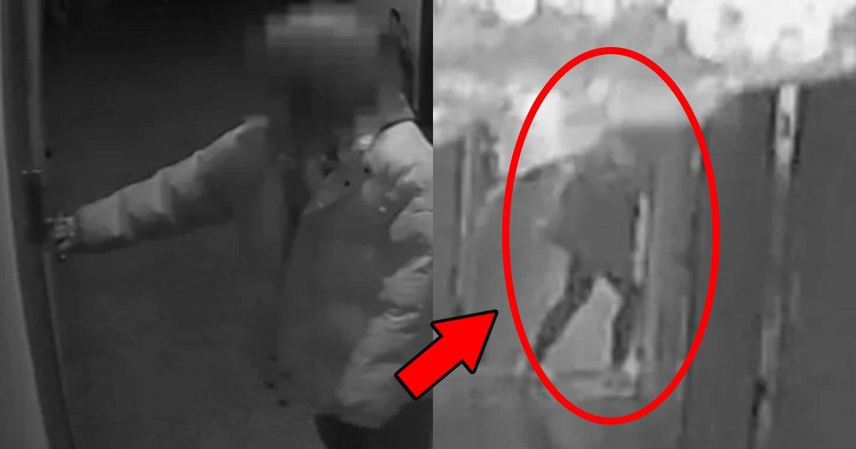 huhou.png?resize=1200,630 - 見知らぬ女がマンションに侵入しては襲われた男性のその後の結末に「ありえない」