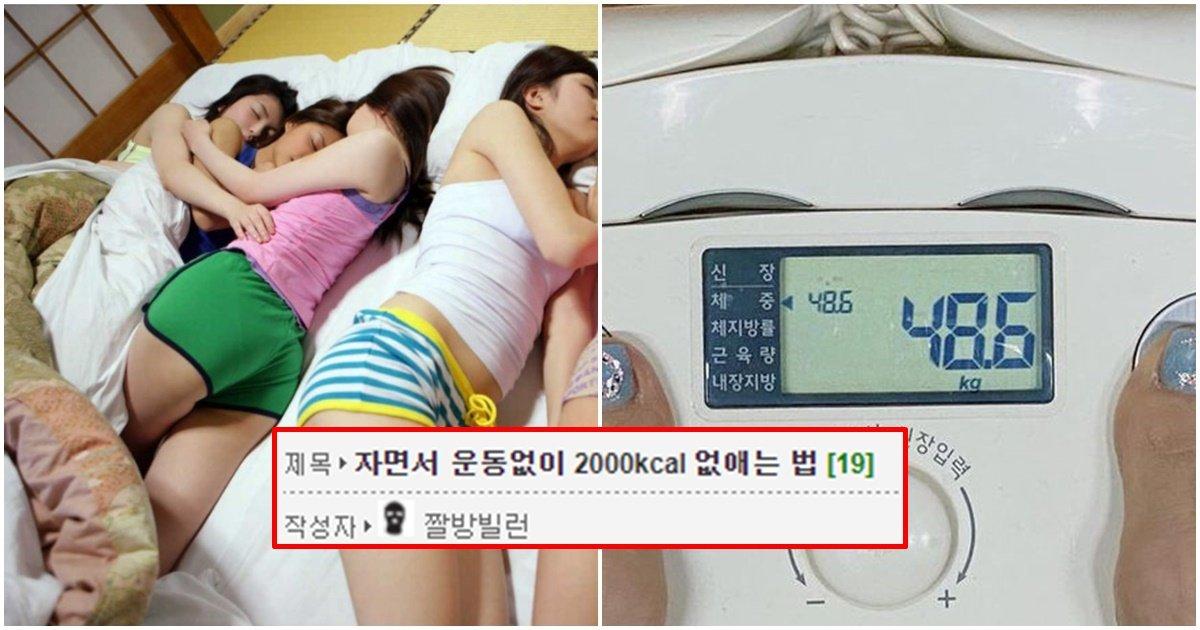 "page 170.jpg?resize=412,232 - ""잠만 잤을 뿐인데 '2000kcal'가 감량됐습니다!!!"".. 네티즌 난리난 '2000kcal' 수면 다이어트 방법"