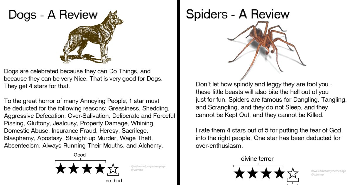 sssssssss.jpg?resize=412,232 - You Won't Believe These Hilarious Reviews That Rate Animals For Odd Reasons