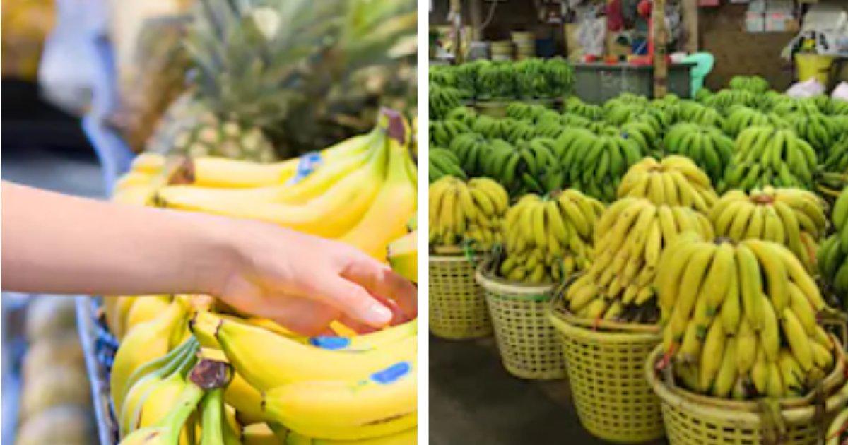 titulo 22 3.png?resize=1200,630 - Envían Plátanos Rellenos Con Sustancias Ilegales A Supermercados