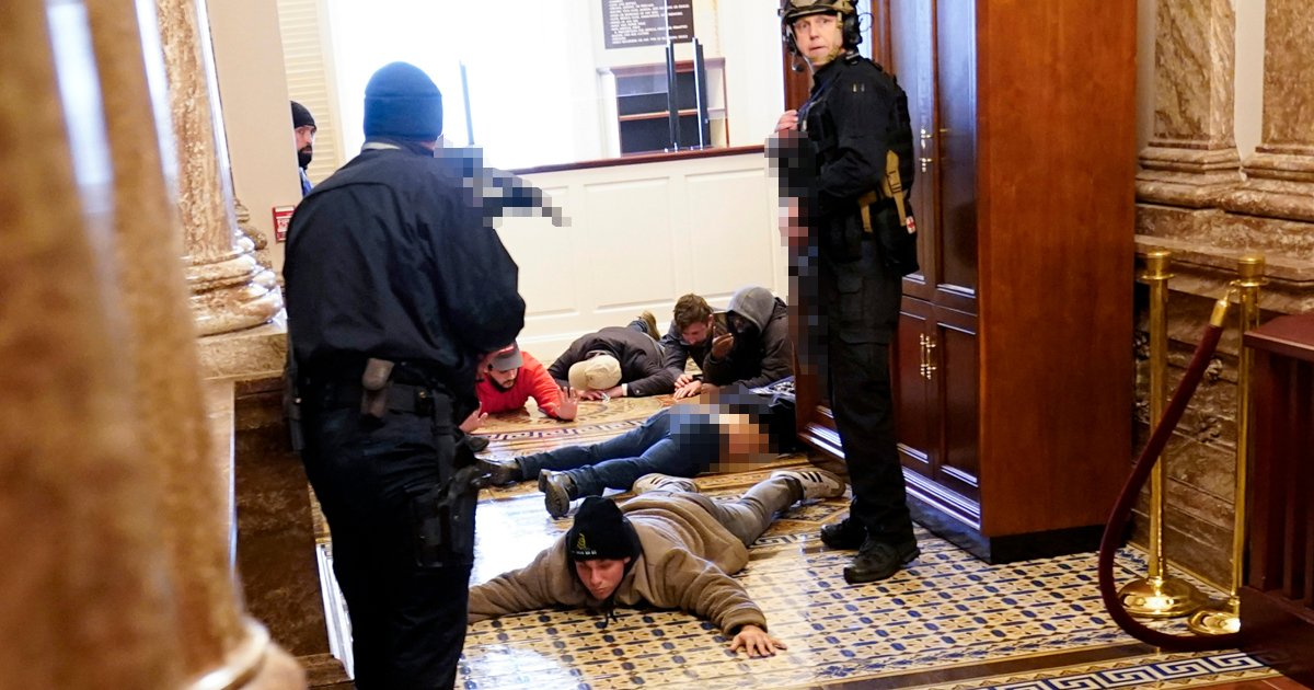 trtty.jpg?resize=1200,630 - NY Businessman Arrested During DC Riots Says Detainees Were Treated Like 'Animals'