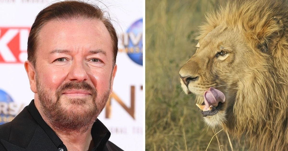untitled design 5 2.jpg?resize=412,232 - Ricky Gervais Wants His Body To Be Eaten By Lions After He Dies