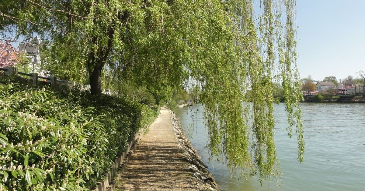 3 val de marne.jpg?resize=412,275 - Val-de-Marne: le corps d'un homme a été repêché dans la Marne avec les pieds et poings liés