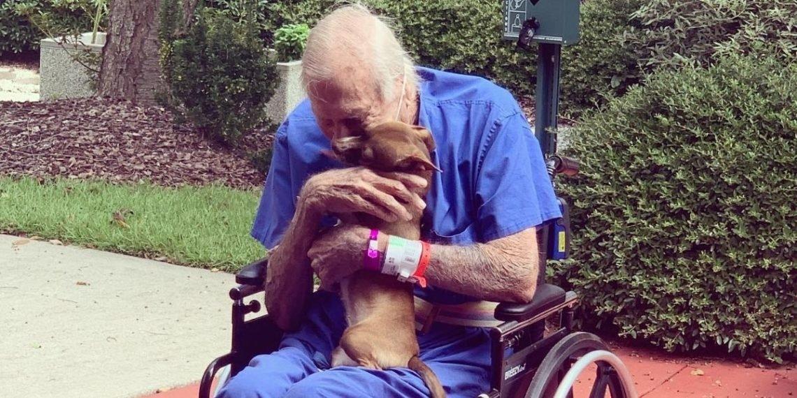 Resultado de imagen de abuelo con perro