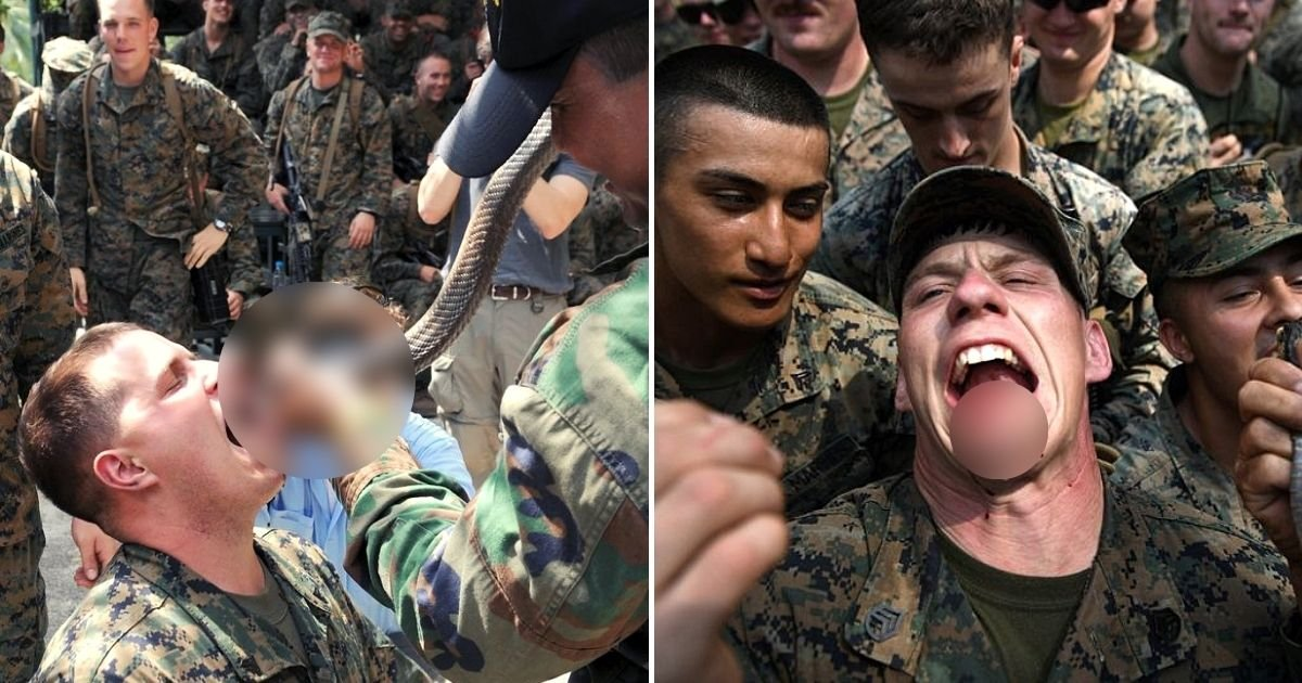 drill5.jpg?resize=1200,630 - Calls To End Grisly Military Drills Where US Marines Drink Snake Blood And Eat Geckos