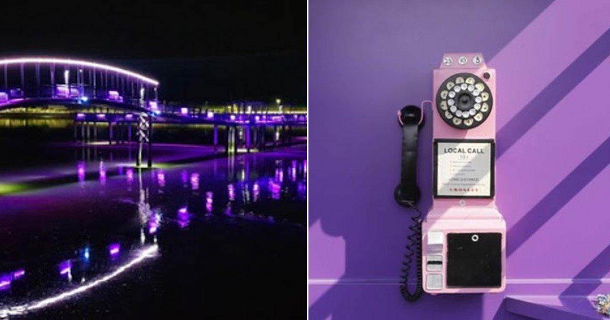 ebacb4eca09c 1 10.jpg?resize=412,232 - 외신마저 '극찬' 했다는 온통 '보라색'으로 물들인 대한민국 유명 도시의 정체 (영상)