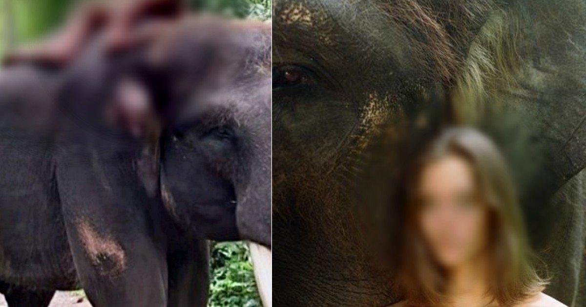 "ebacb4eca09c 6 6.jpg?resize=1200,630 - ""헉;;;""...'알몸'으로 '코끼리' 올라타서 사진 찍은 여성 모델.jpg (사진)"