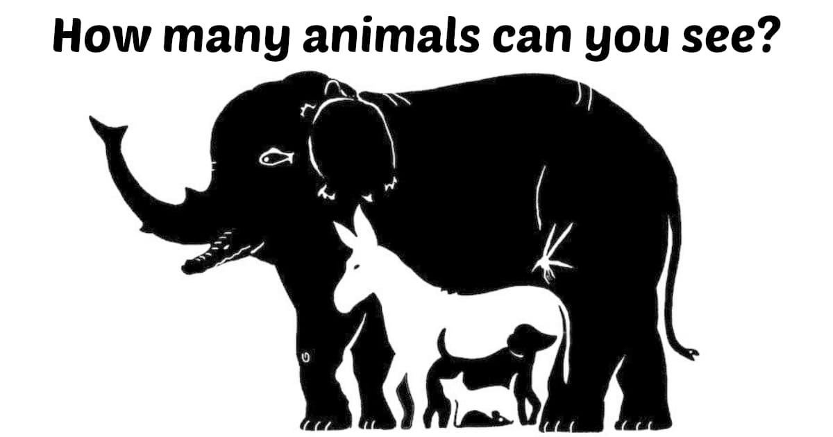 fggg.jpg?resize=412,232 - How Many Animals Can You See?