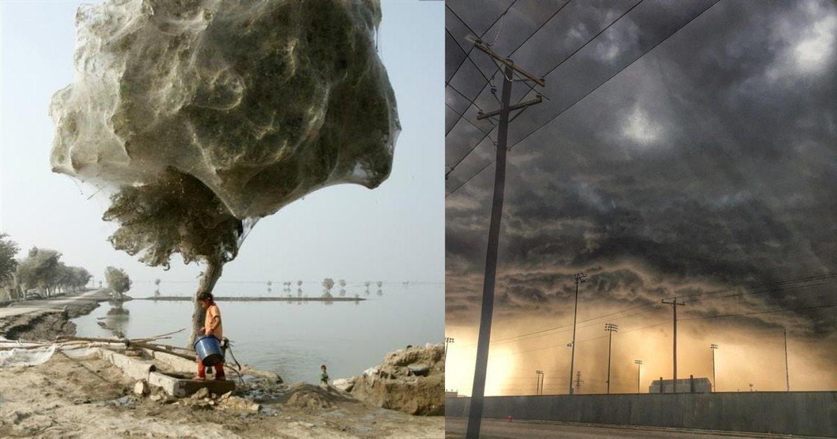 photos surprenantes.png?resize=1200,630 - Voici 12 images incroyables et sans retouches du monde qui nous entoure