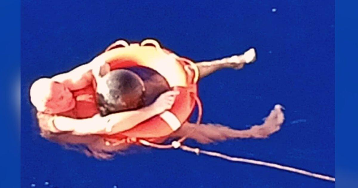 titulo 1 7.png?resize=412,275 - Un Hombre Sobrevivió En El Mar Solo Con Un Pedazo De Basura