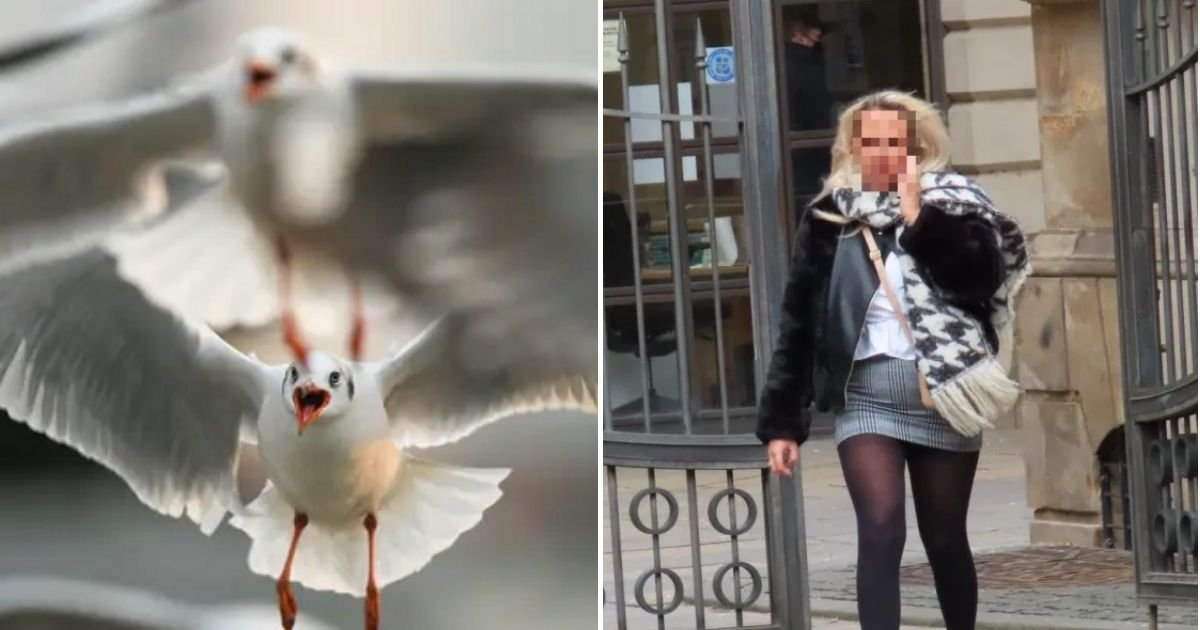 tongue5.jpg?resize=412,232 - Seagull Flies Off With A Part Of Man's Tongue After Woman Bites It Off During Street Fight