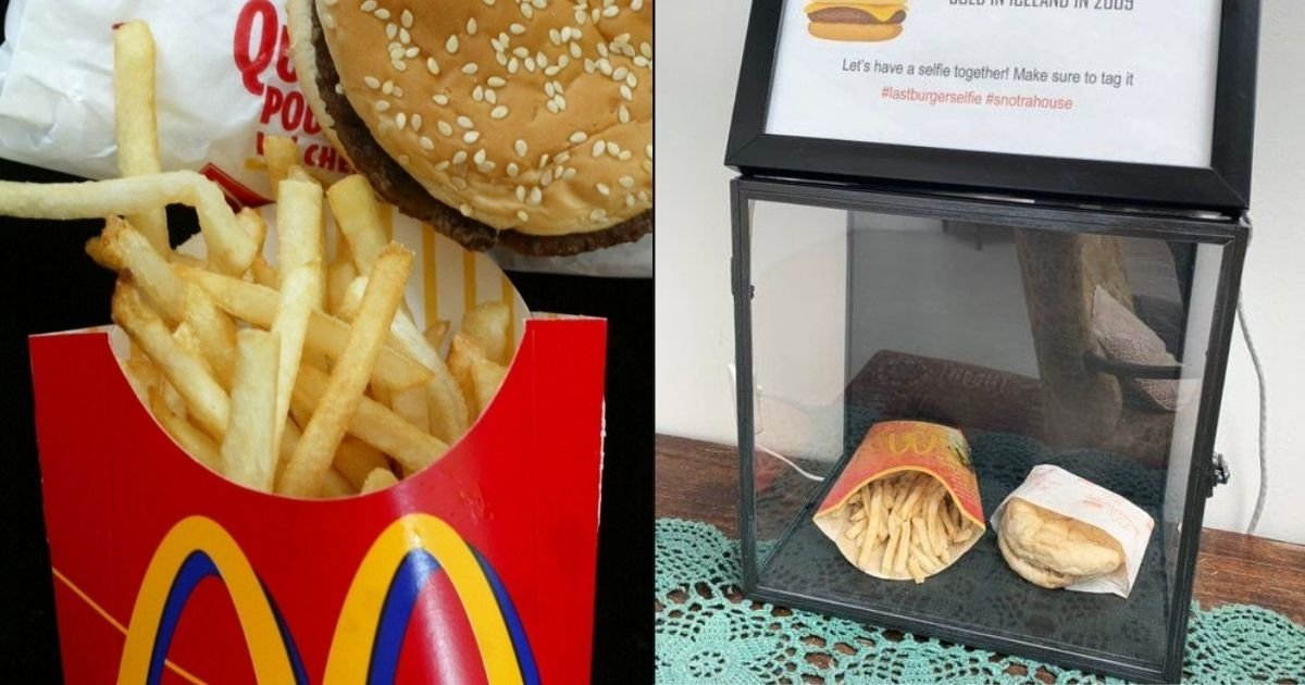 1 172.jpg?resize=1200,630 - After 10 Years Of Safe Keeping, McDonald's Cheeseburger & Fries Are Still 'Fresh'