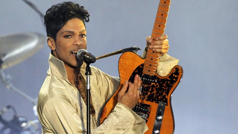 how many instruments did prince play