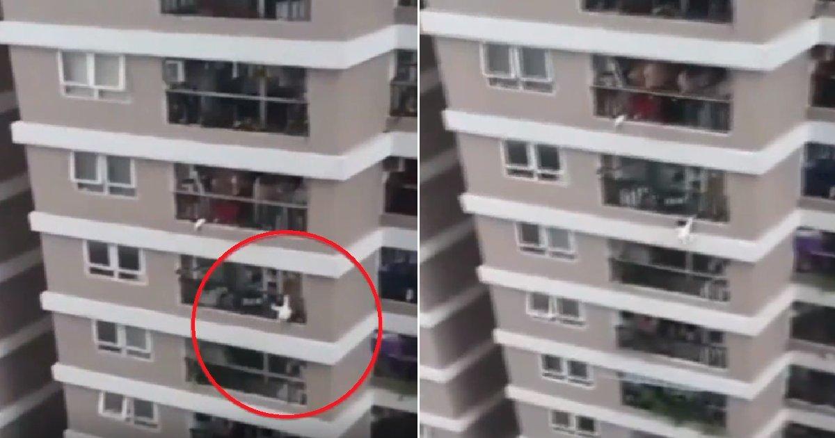 eca09cebaaa9 ec9786ec9d8c 3.png?resize=412,232 - 아파트 12층서 떨어지는 '2살 아기' 살린 배달 기사 (+영상)