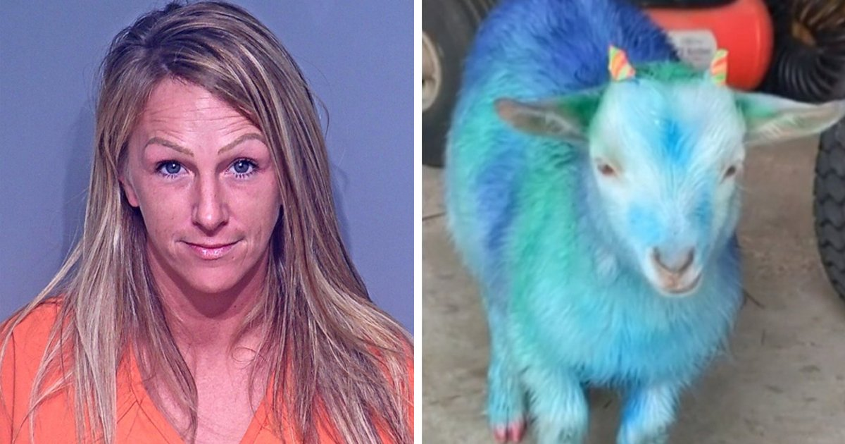 ggssgsg.jpg?resize=412,232 - Woman Thrown In Jail For Stealing Neighbor's Goat & Painting It Blue