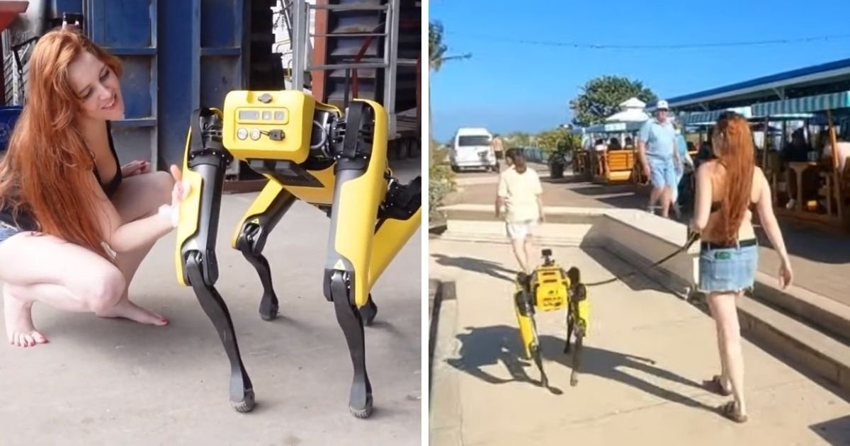 untitled design 1 2.jpg?resize=412,232 - Woman Seen Walking Her Robot Dog Along A Beach And Making It Obey Her Commands