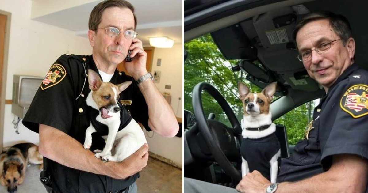 111.jpg?resize=1200,630 - Ohio Sheriff Who Died Hours Apart From Police Chihuahua Partner Will Now Be Buried Together