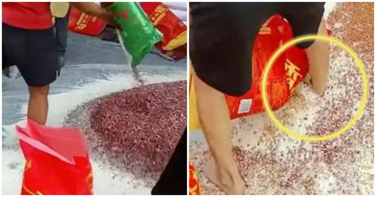 "4 17.jpg?resize=1200,630 - ""또 중국이다.""... 더러운 '맨발'로 쌀 휘저으며 '잡곡쌀' 혼합하는 중국의 쌀 공장(영상)"
