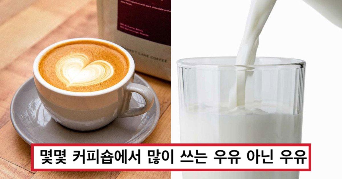 7144ede9 3888 415c 9daa 2511ab06f047.jpeg?resize=412,232 - 몇몇 커피숍에서 '우유'들어간 메뉴 먹고 속이 거북했던 '진짜' 이유 알려준다