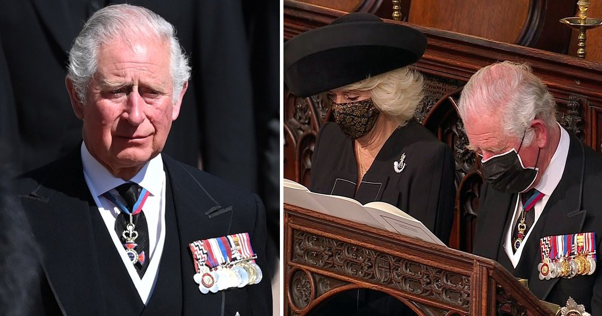 dddddddfff.jpg?resize=732,290 - Tearful Prince Charles Bids Emotional Final Farewell To His Father Prince Philip