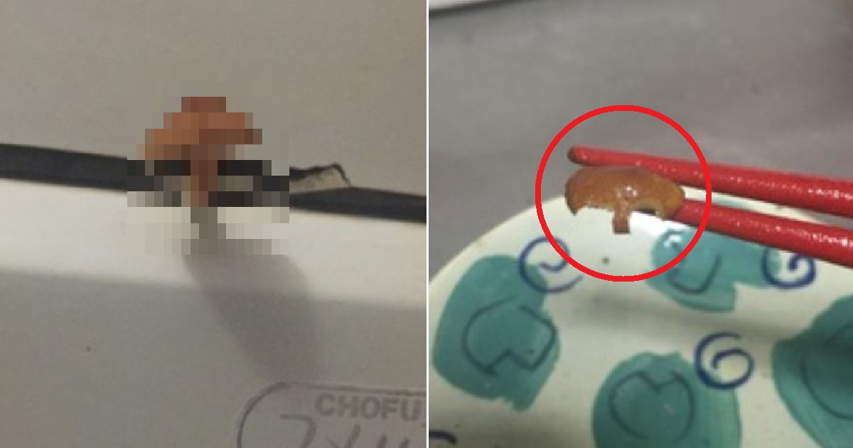 eca09cebaaa9 ec9786ec9d8c 75.png?resize=1200,630 - 커뮤니티 댓글만 믿고 화장실에서 자란 버섯 먹은 네티즌(+사진)