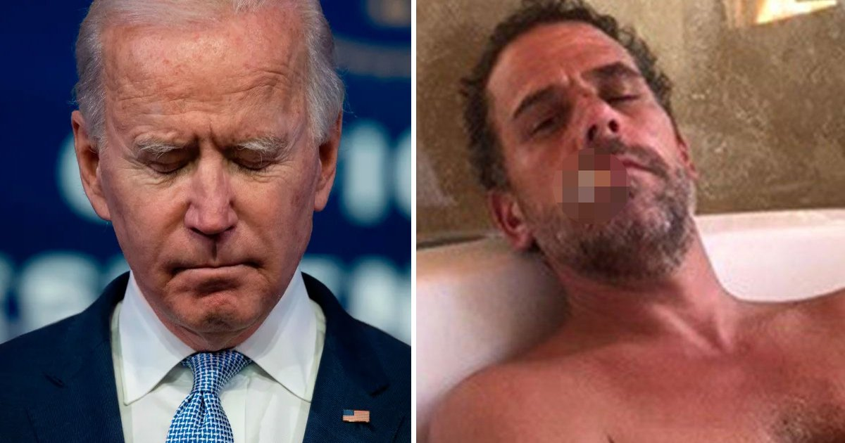 hhshs.jpg?resize=412,232 - Hunter Biden Reveals Sobbing Dad Joe Carried Out Drugs Intervention With Him During 2020 Campaign