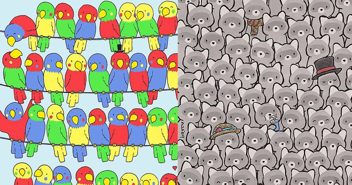 puzzle thumb.png?resize=412,232 - Cute Birds And Raccoons Brainteaser: Will YOU Be Able To Solve BOTH Puzzles?