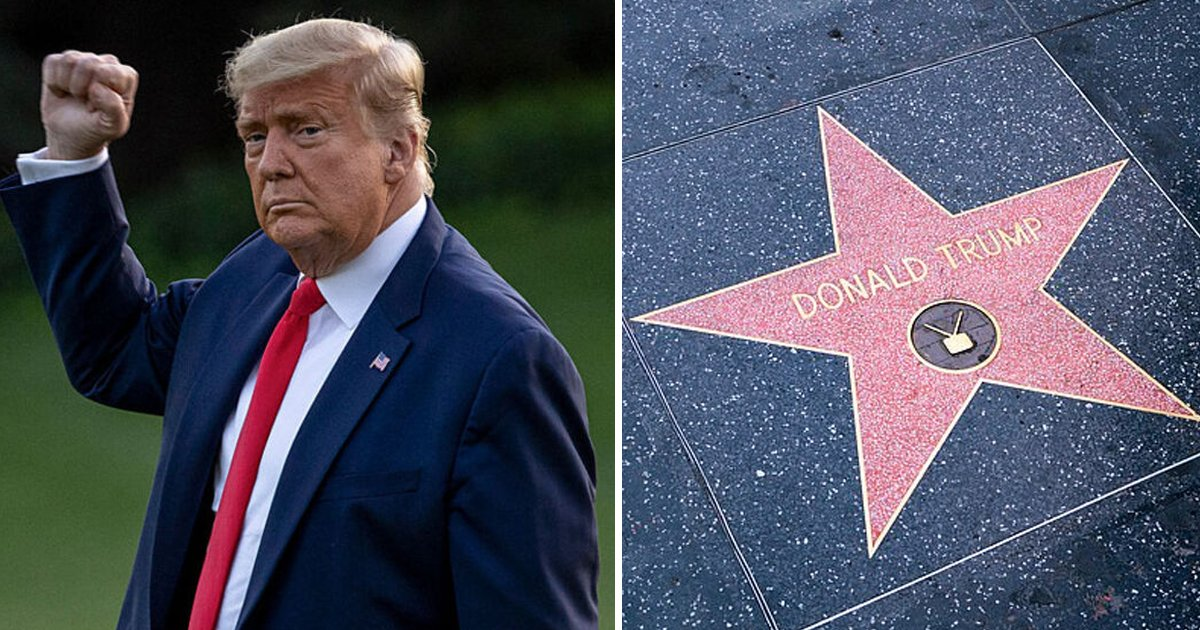 w1.jpg?resize=1200,630 - Trump's Hollywood Walk of Fame Star Replaced After Being DESTROYED '3 Times'