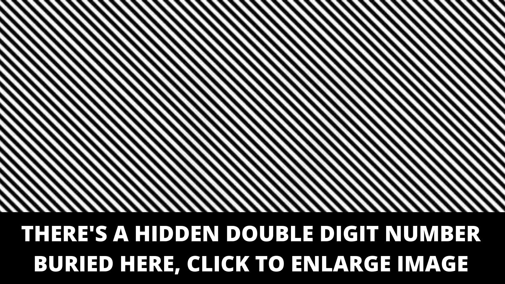 1 157.jpg?resize=412,275 - There Is A Double-Digit Number Buried In This Optical Illusion, Can You Spot It?