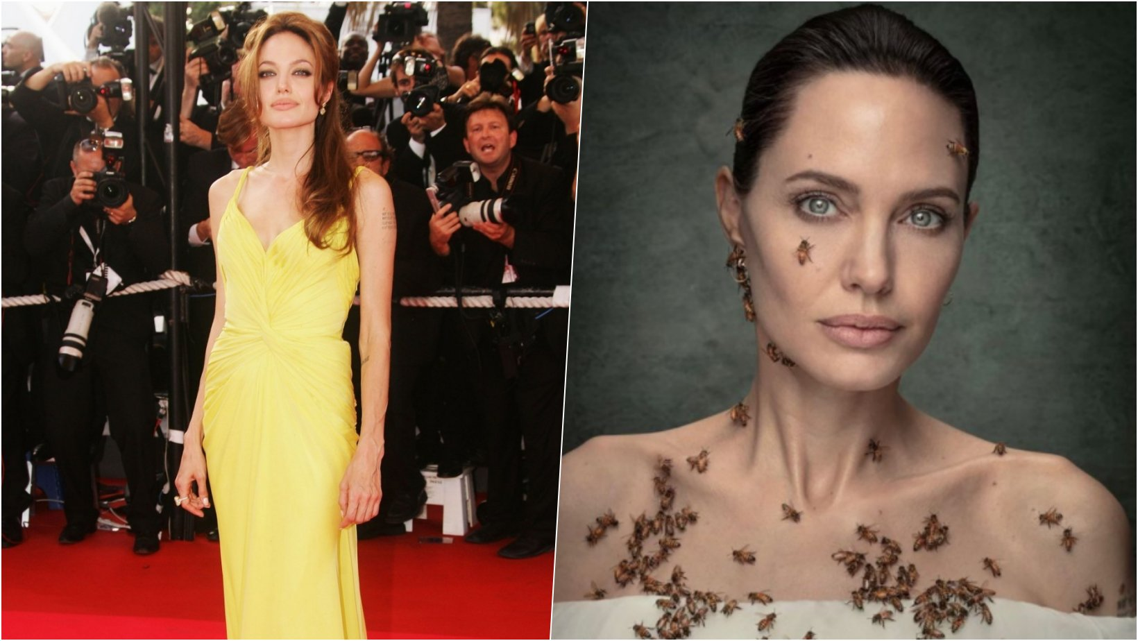 6 facebook cover 36.png?resize=1200,630 - Angelina Jolie Admits She Did Not Shower For Three Days For World Bee Day Photoshoot