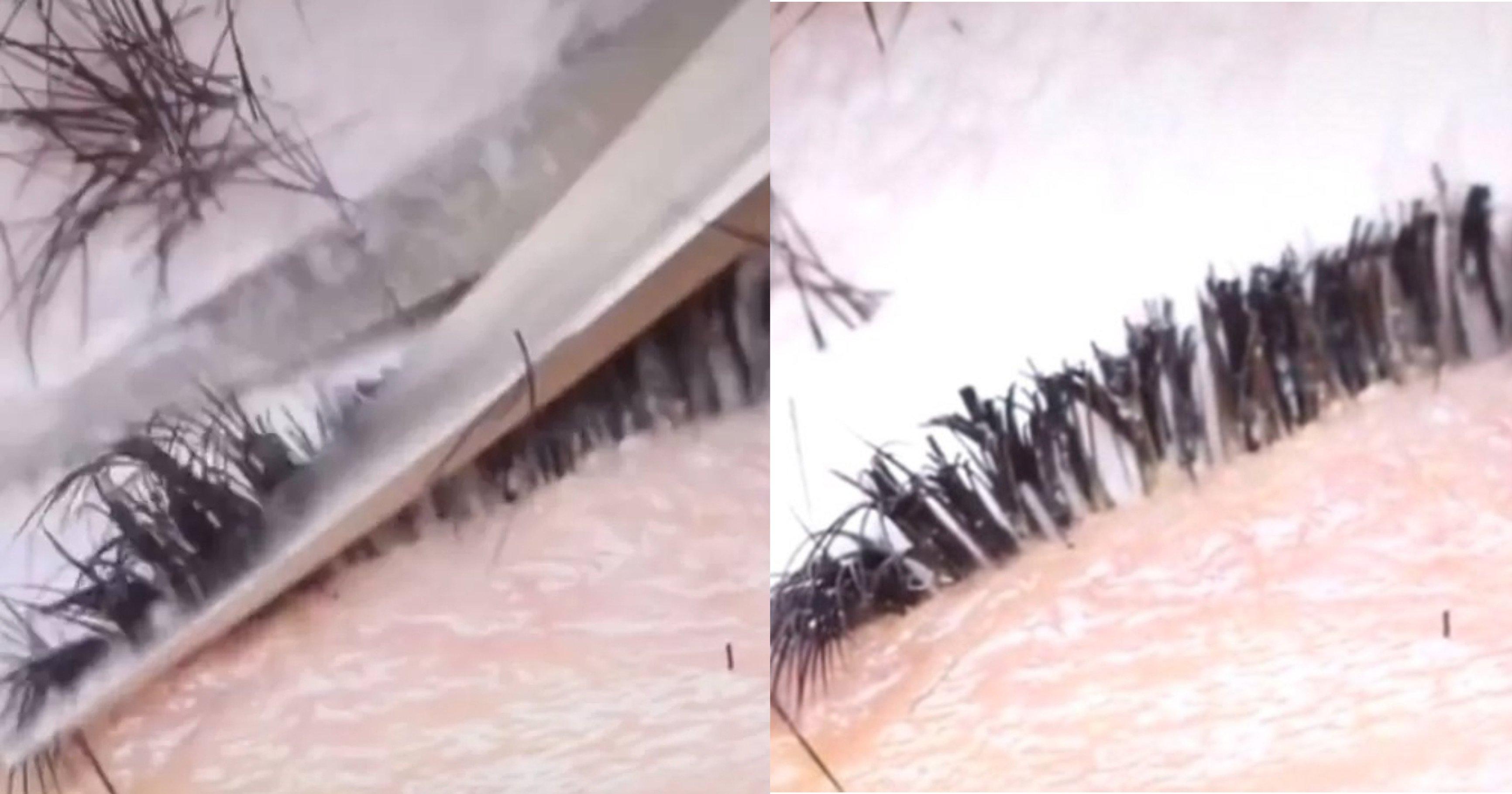 af2e23ac 2308 4b56 be95 b4ae4a58f2b6.jpeg?resize=412,275 - 「まつエク」施術後、お客さんが代金支払えないと言うと、容赦なくまつ毛を切ってしまうスタッフ