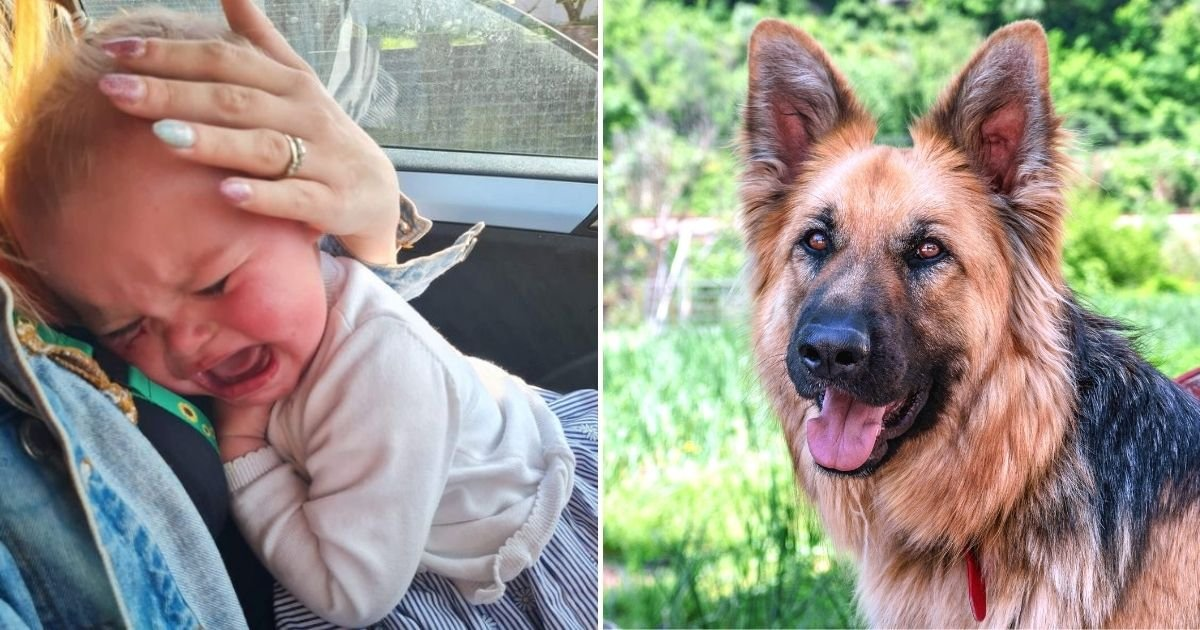 baby6.jpg?resize=412,232 - 18-Month-Old Baby Girl Savaged By Dog In Horrific Attack That Missed Her Eye By Only Millimeters