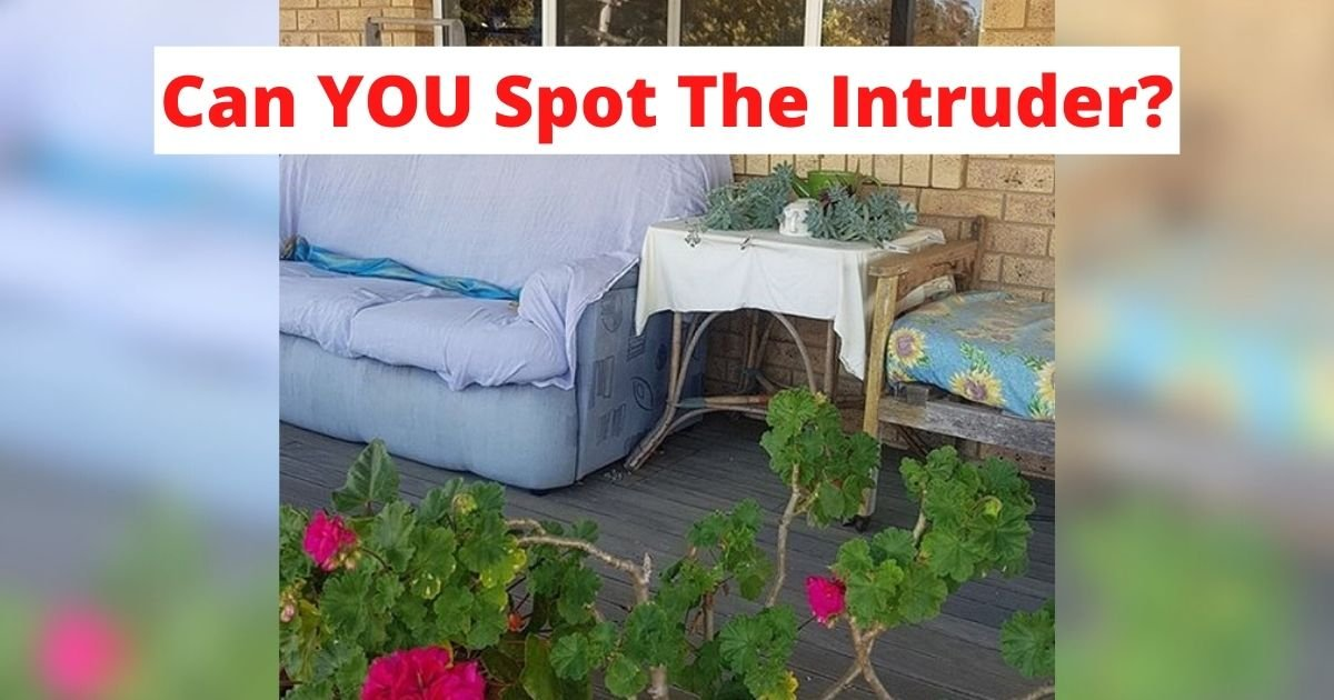 can you spot the intruder.jpg?resize=1200,630 - Family Immediately Calls For Help After Taking A Closer Look At The Photo Of Their Home