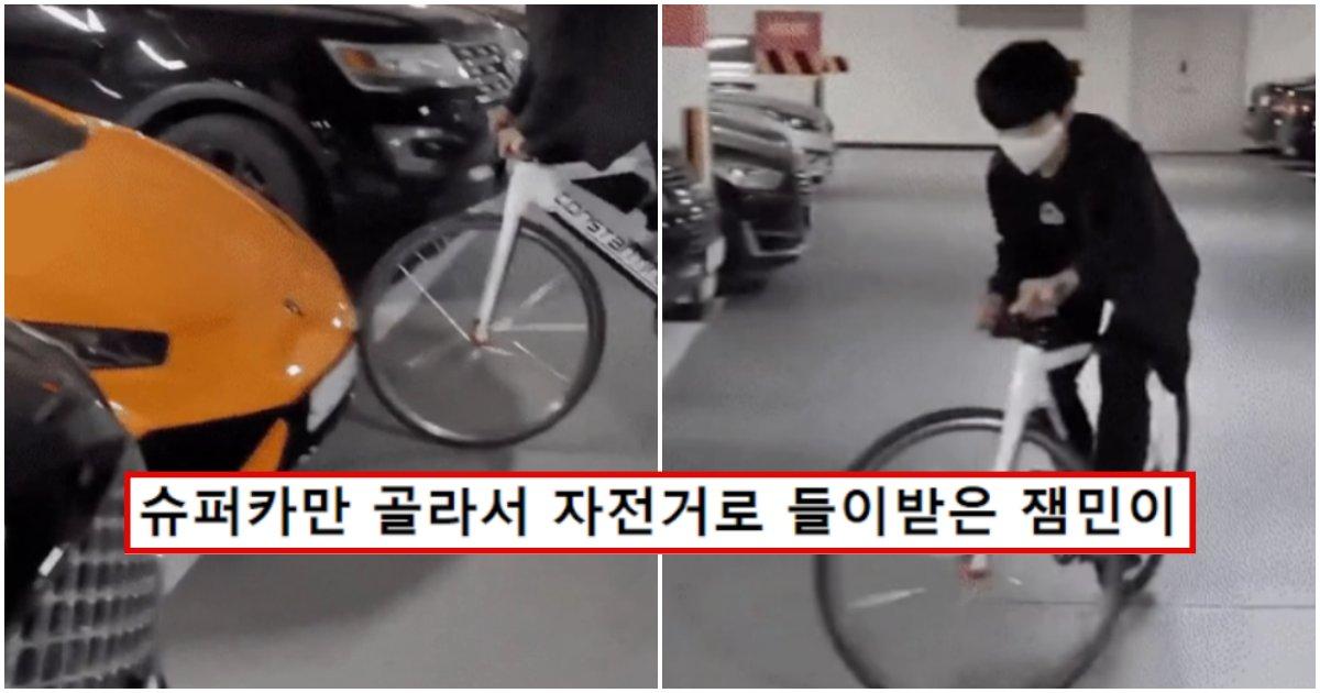 """collage 245.png?resize=1200,630 - """"요즘 K-잼민이 수준;;""""… 슈퍼카만 골라서 자전거로 들이받은 K-잼민이의 최후 (+사진)"""