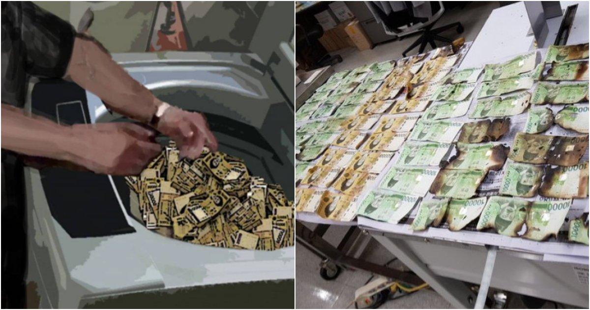 collage 491.png?resize=1200,630 - 코로나19 씻어내겠다며 세탁기에 2300만원 넣고 냅다 돌려버린 사람의 최후 (+전자레인지)