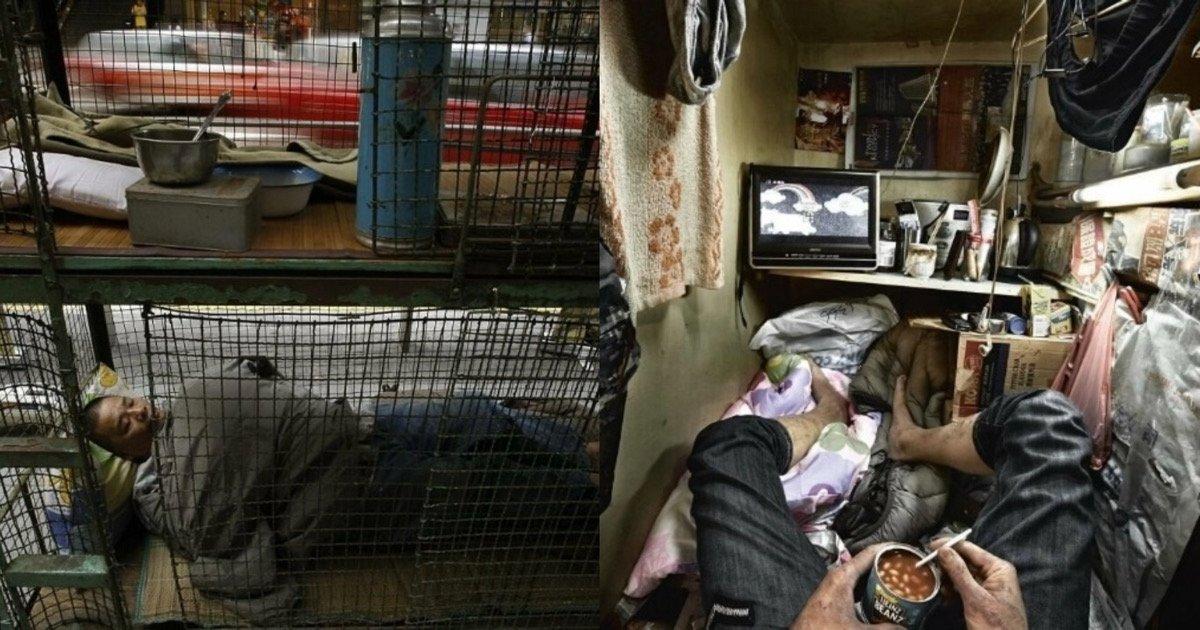 """df2e1beb 50b9 4cdf a577 a56e84864784.jpeg?resize=1200,630 - """"와 이건 진짜 심각한데.. 어떻게 사냐""""…역대급으로 충격적이라고 난리 난 홍콩 '극빈층'의 삶"""