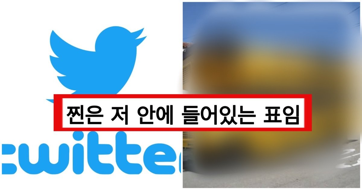 "e3858ce38587e3858c.jpg?resize=412,232 - ""실시간 트위터 5천알티 넘었다"" 는 버스 관련 사진과 그 이유"