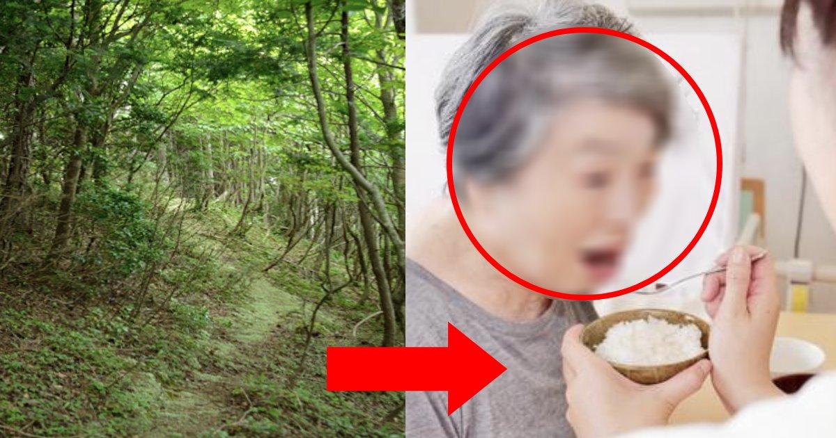 e696b0e8a68fe38397e383ade382b8e382a7e382afe38388 101.png?resize=412,275 - 山中で木に寄りかかる男性を保護、食料を与えた…このまま一人にしては危ないと、懸命な判断