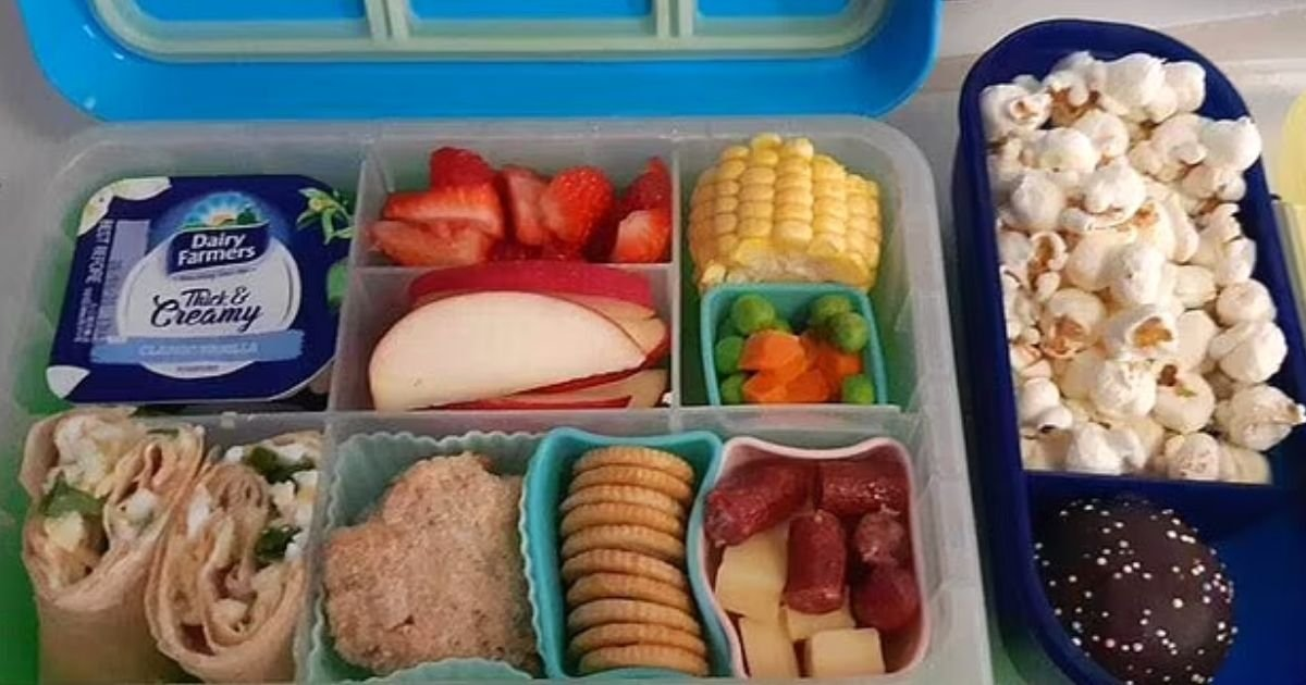 lunchbox.jpg?resize=412,232 - Mother's Lunchbox For Her 3-Year-Old Son Sparks Debate After She Shared A Photo Of It On Social Media