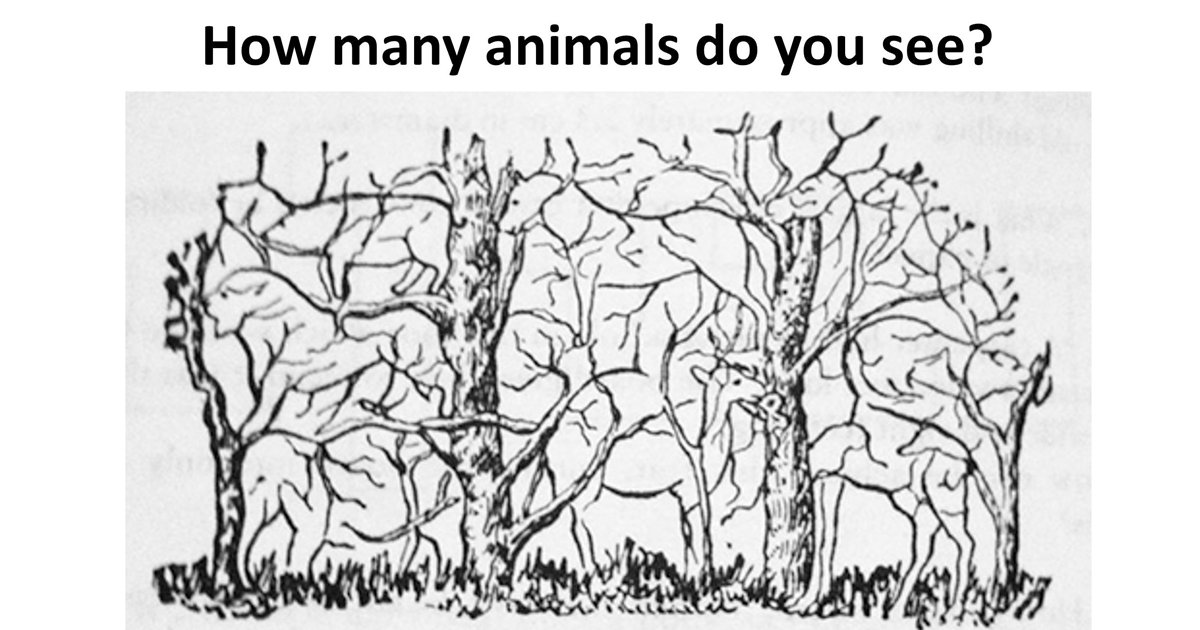 w2 11.jpg?resize=412,232 - How Many Animals Can You Find In This 'Hidden' Picture Puzzle?
