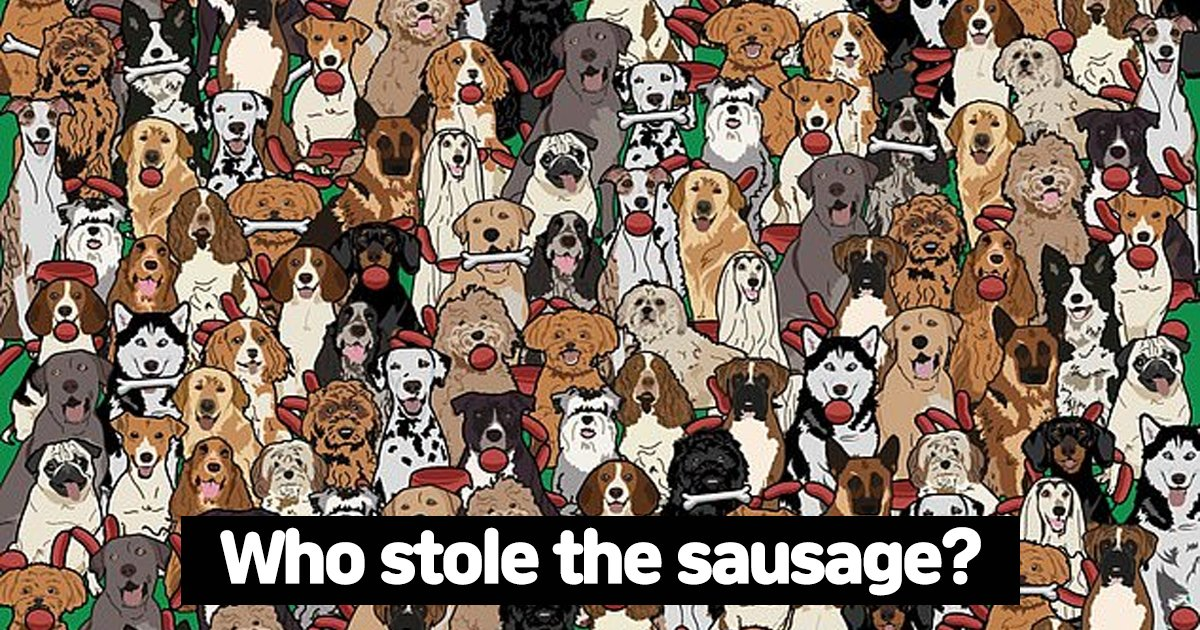 w2 4.jpg?resize=1200,630 - Can YOU Spot The Dog Who Stole The Sausage In This Tricky Hide & Seek Puzzle?